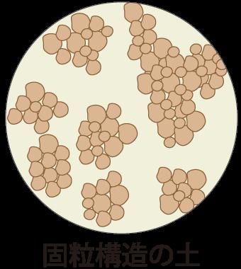 固粒構造の土