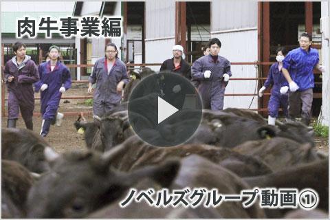グループ動画肉牛事業編