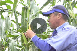 グループ動画ダイジェスト「農家の方に聞く」