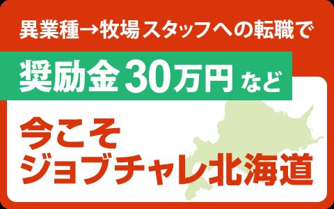 ジョブチャレ北海道