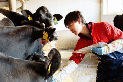 酪農専門スタッフ