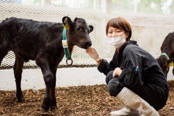 肉牛牧場スタッフ(子牛育成)